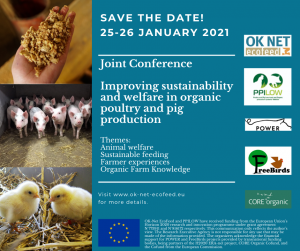 Joint Online Conference OK-Net EcoFeed, PPILOW, Freebirds and POWER EU Projects!